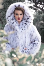 Nevris Collection Swan Lake 2014