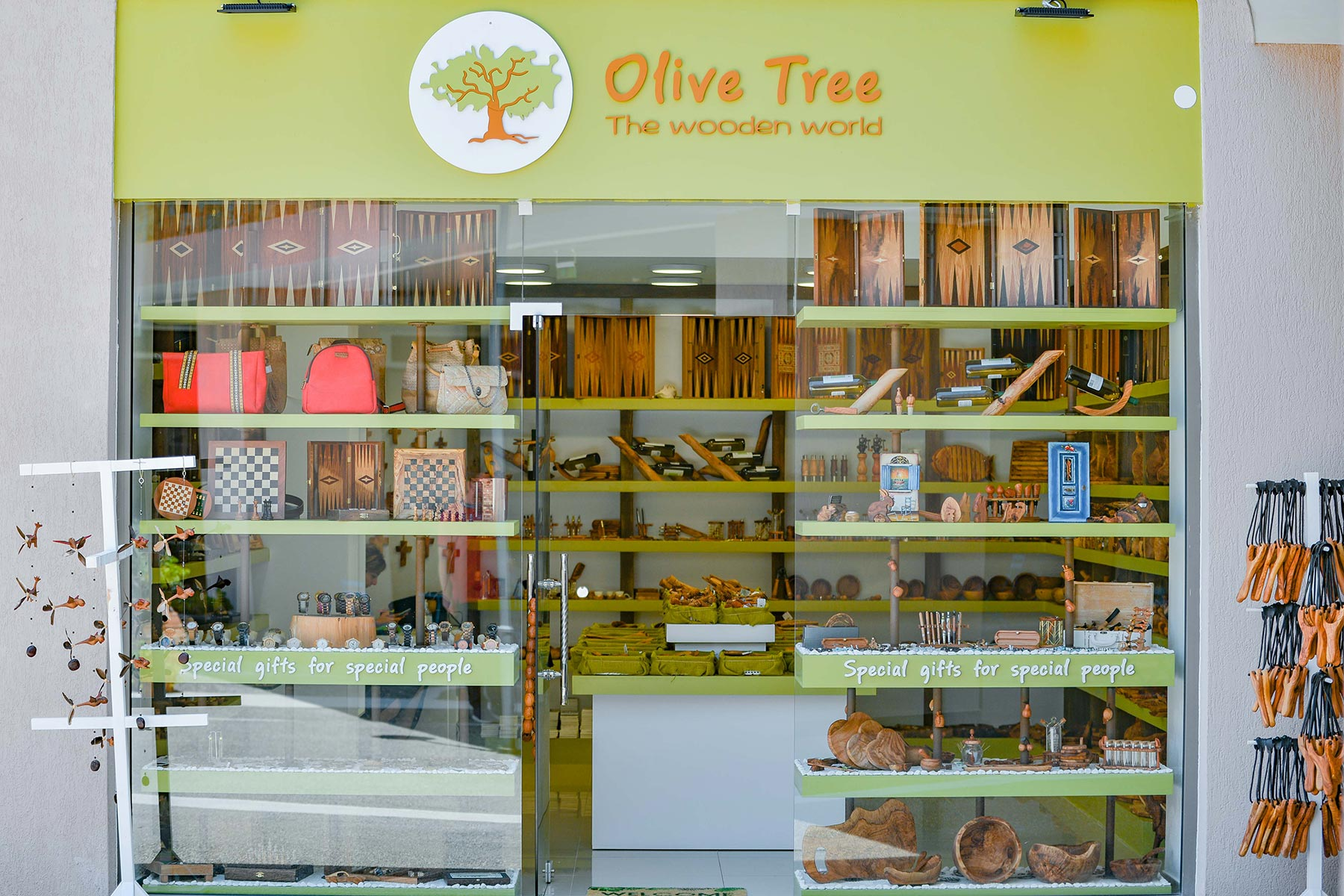 Olive Tree The Wooden World